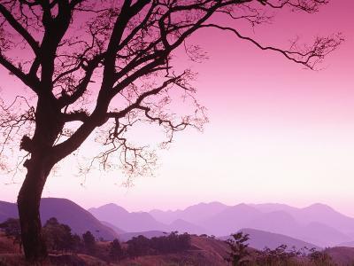Serra Dos Orgaos National Park, Brazil-Silvestre Machado-Photographic Print