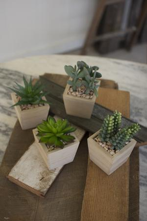 Set of Four Artificial Succulents in a Wooden Pot