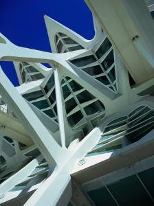 Detail of the City of Arts and Sciences Building, Valencia, Spain by Setchfield Neil