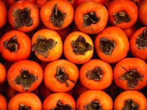 Persimmons from a Stall in the Central Market, Athens, Attica, Greece by Setchfield Neil
