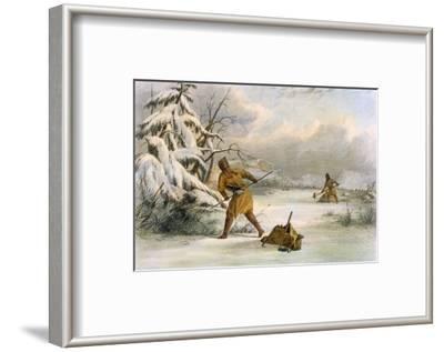 Spearing Muskrats in Winter