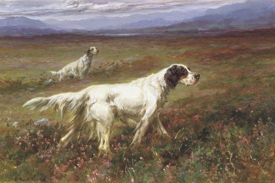Setters on the Moors-Maud Earl-Giclee Print