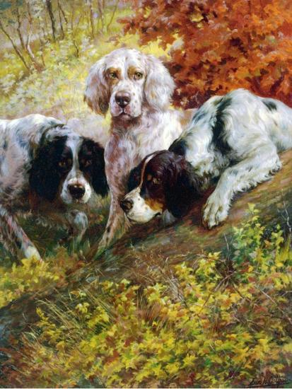 Setters-Edmund Henry Osthaus-Giclee Print
