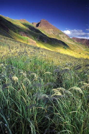 Setting Sun Light and Grass on the Backside of the Maroon Bells Mountains-Keith Ladzinski-Photographic Print