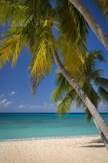 Seven Mile Beach, Grand Cayman, Cayman Islands, West Indies-Brian Jannsen-Photographic Print