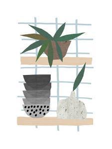 Shelf Life by Seventy Tree
