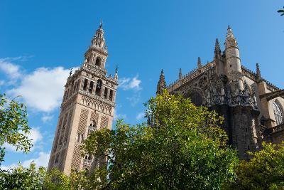 Sevilla Cathedral and Giralda, Seville, Andalucia, Spain-Carlo Morucchio-Photographic Print