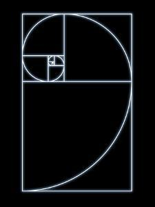 Fibonacci Spiral, Artwork by SEYMOUR
