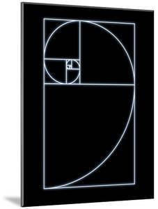 Fibonacci Spiral, Artwork by SEYMOUR