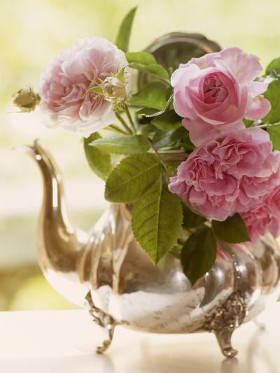 Shabby Roses Roses Flower Floral Vintage 3-Grab My Art-Art Print
