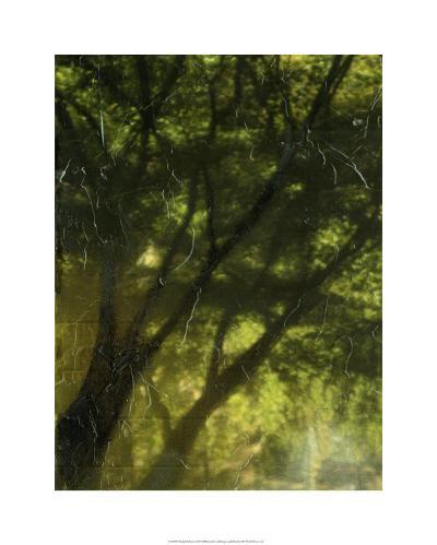 Shaded Reflection II-Jennifer Goldberger-Limited Edition
