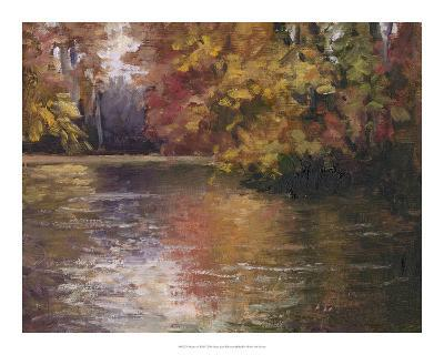 Shades of Fall-Mary Jean Weber-Giclee Print