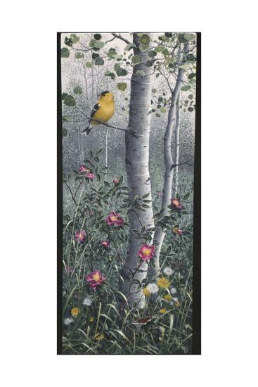 Shades of Summer-Jeff Tift-Giclee Print