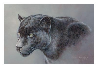Shadow Hunter-Kalon Baughan-Art Print