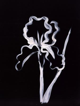 https://imgc.artprintimages.com/img/print/shadow-iris_u-l-p63amv0.jpg?p=0