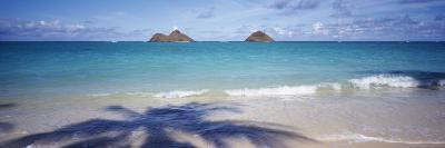 Shadow of a Tree on the Beach, Lanikai Beach, Oahu, Hawaii, USA--Photographic Print