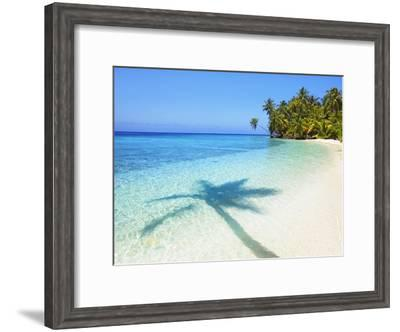 Shadow of palm tree on water-Frank Krahmer-Framed Photographic Print