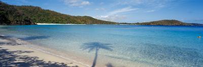 Shadow of Trees on Beach, Hawksnest Bay, Virgin Islands National Park, St. John, Us Virgin Islands--Photographic Print
