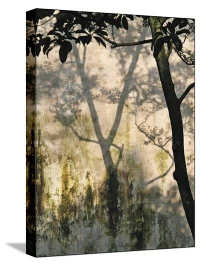 Shadow on the Wall-Monika Wright-Stretched Canvas Print