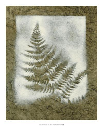 Shadows & Ferns II-Renee W^ Stramel-Giclee Print