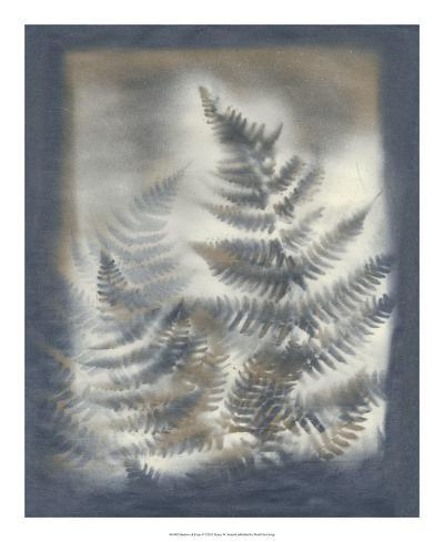 Shadows & Ferns V-Renee W^ Stramel-Giclee Print