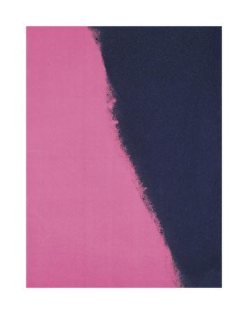 https://imgc.artprintimages.com/img/print/shadows-ii-1979-pink_u-l-f5lukj0.jpg?p=0