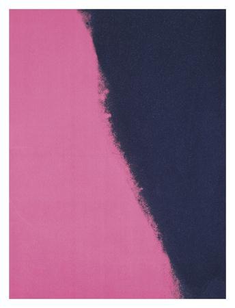 https://imgc.artprintimages.com/img/print/shadows-ii-1979-pink_u-l-f5luo30.jpg?p=0