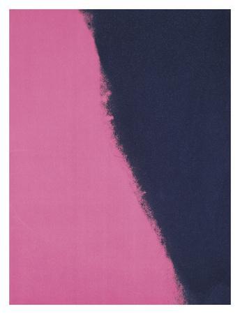 https://imgc.artprintimages.com/img/print/shadows-ii-1979-pink_u-l-f8cku40.jpg?p=0