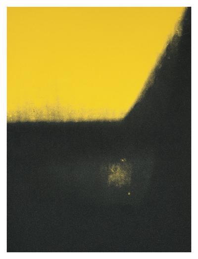 Shadows II, 1979-Andy Warhol-Art Print