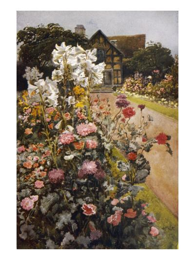 Shakespeare's Garden--Giclee Print