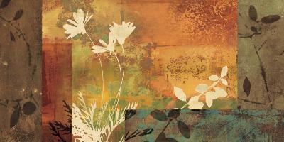Shambala I-Chris Donovan-Art Print