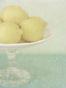 Lemon Stand by Shana Rae