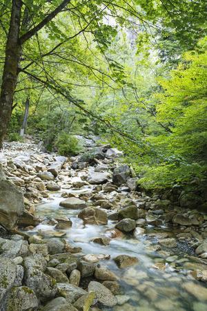 https://imgc.artprintimages.com/img/print/shannon-falls-provincial-park-near-squamish-british-columbia-canada_u-l-q1df2kq0.jpg?p=0