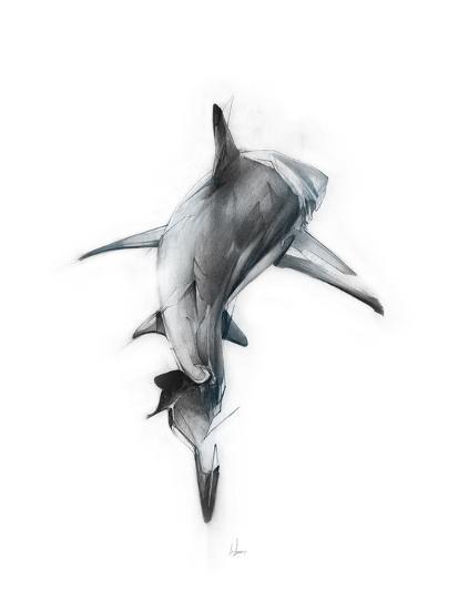 Shark 3 Art Print by Alexis Marcou   Art com