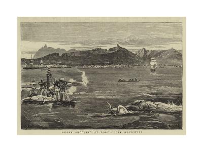 Shark Shooting at Port Louis, Mauritius-Joseph Nash-Giclee Print