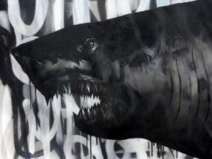 Black on Black Shark by Shark Toof