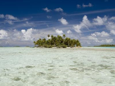 Sharks, Blue Lagoon, Rangiroa, Tuamotu Archipelago, French Polynesia Islands-Sergio Pitamitz-Photographic Print
