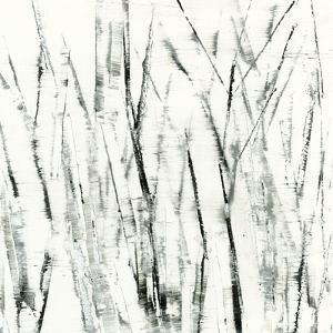 Birches I by Sharon Gordon