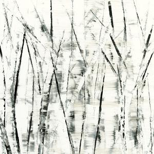 Birches II by Sharon Gordon