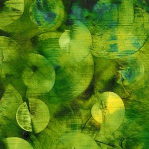 Nautilus in Green I by Sharon Gordon
