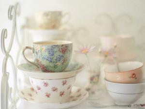 Teacups on White by Sharon Lapkin