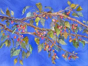 Crab Apple III by Sharon Pitts