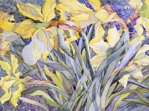 Daffodils, Van Vleck by Sharon Pitts