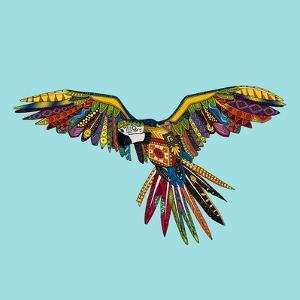 Harlequin Parrot by Sharon Turner