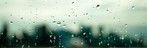 Rain City by Sharon Wish
