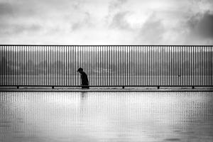 Shortwave by Sharon Wish