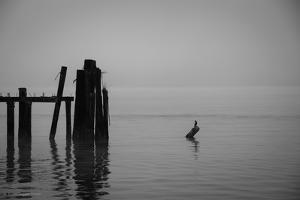 Tranquil Sea View with Wooden Jetty by Sharon Wish
