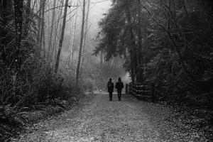 Two Figures Walking in Distance in Woodland by Sharon Wish