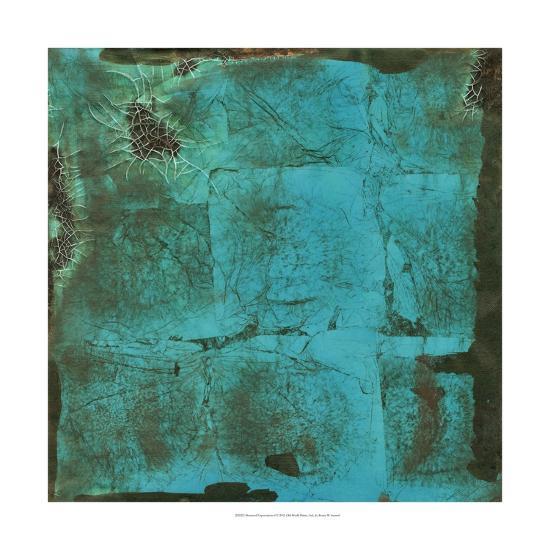 Shattered Expectations I-Renee W^ Stramel-Art Print