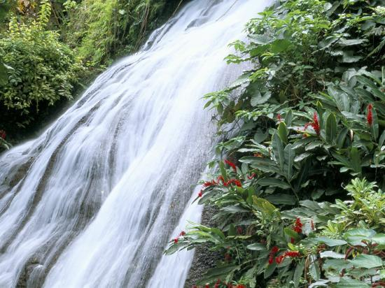 Shaw Waterfalls, Ocho Rios, Jamaica, West Indies, Central America-Sergio Pitamitz-Photographic Print
